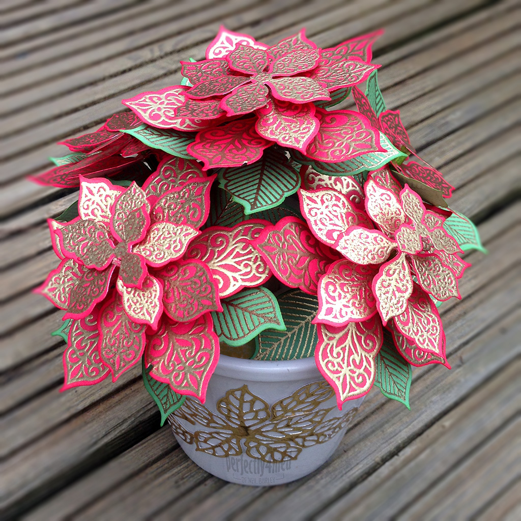 potted poinsettia  for creative expressions